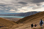 Image of ALPINE RECREATION TEKAPO TREK - Lake Tekapo