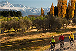 CYCLE JOURNEYS Alps 2 Ocean - Twizel and Mount Cook, Canterbury